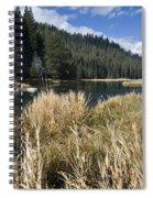 Sierra Serenity Spiral Notebook