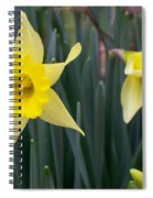 Sign Of Spring Spiral Notebook