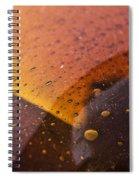 Signs-3 Spiral Notebook