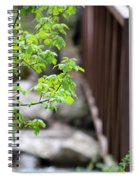 Signs Of Spring In American Fork Canyon Utah Spiral Notebook