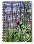 Silent Blessings Spiral Notebook