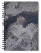 Silent Observer Spiral Notebook
