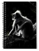 Silhouette Of A Monkey Spiral Notebook