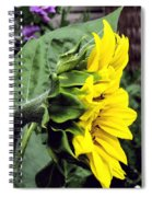 Silhouette Of A Sunflower Spiral Notebook