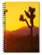 Silhouette Of Joshua Trees Yucca Spiral Notebook