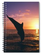 Silhouette Of Two Bottlenose Dolphins Spiral Notebook