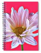 Silky 12618-8 Spiral Notebook