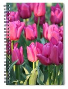 Silky Pink Tulips Spiral Notebook