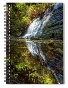 Silky Reflections Spiral Notebook