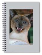 Silly Sadi Smiling Spiral Notebook