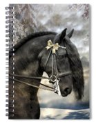 Silver And Gold Spiral Notebook