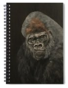 Silver Backed Gorilla Spiral Notebook