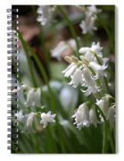 Silver Bells Spiral Notebook