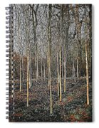 Silver Birch Winter Garden Spiral Notebook