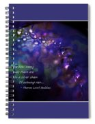 Silver Chain Of Evening Rain Spiral Notebook