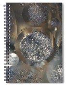 Silver Circles Spiral Notebook