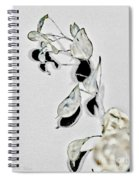 Silver Dollar Abstract Spiral Notebook