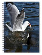Silver Gull And Australian Coot Spiral Notebook