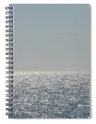 Silver Light On Lake Michigan Spiral Notebook