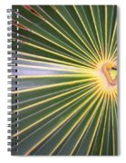 Silver Palm  Spiral Notebook