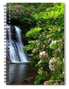 Silver Run Falls Mountain Laurel Spiral Notebook