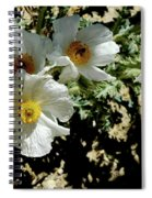 Silver Terrace Virginia City Nevada Flowers Spiral Notebook