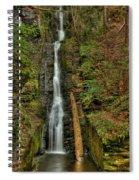 Silver Thread Spiral Notebook