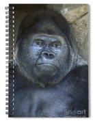 Silverback Portrait Spiral Notebook