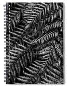 Silvern Spiral Notebook