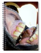 Silvers Smile #3 Spiral Notebook