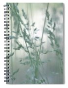 Silvery Green Grasses Spiral Notebook