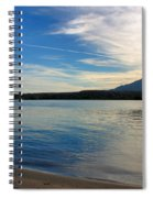 Silvery Reflection Spiral Notebook