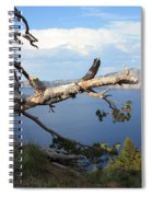 Silvery Tree Over Crater Lake Spiral Notebook