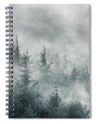 Simbiosis II Spiral Notebook