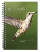 Simple Country Truths Hummingbird Spiral Notebook
