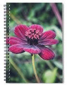 Simple Perfection  Spiral Notebook