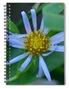 Simple Pleasures Spiral Notebook