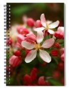 Simple Savory Spring Spiral Notebook