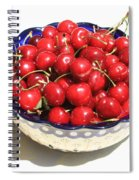Simply A Bowl Of Cherries Spiral Notebook