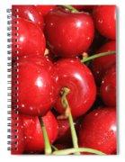 Simply Cherries  Spiral Notebook