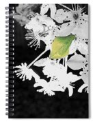 Simply Here Spiral Notebook