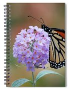 Simply Pretty Spiral Notebook