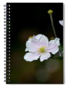 Simply Stated Spiral Notebook