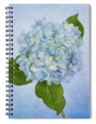 Sing Me The Blues Spiral Notebook