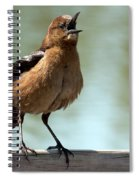 Sing Out Loud Spiral Notebook