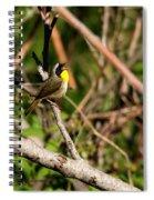 Singing Bandit Spiral Notebook