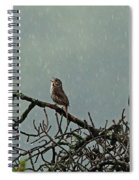 Singing In The Rain Spiral Notebook