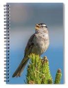 Singing Sparrow Spiral Notebook