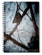 Single Bat Hanging Alone Spiral Notebook