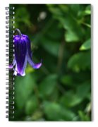 Single Clematis Bell Blossom Spiral Notebook